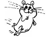 HamsterSkripten